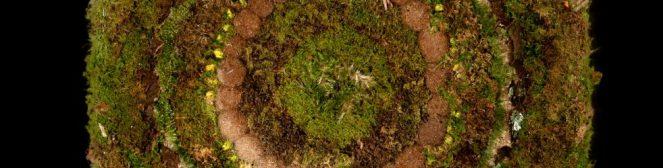 cropped-mousse-fond-noir-grand-carrc3a9-vert.jpg