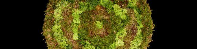 cropped-mousse-fond-noir-rond-vert.jpg