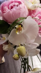 Bouquet Coralyne